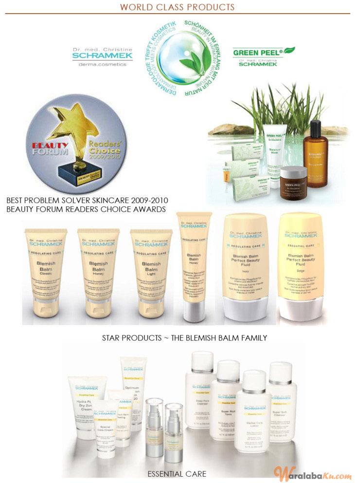 Franchise Peluang Usaha International Beauty & Spa